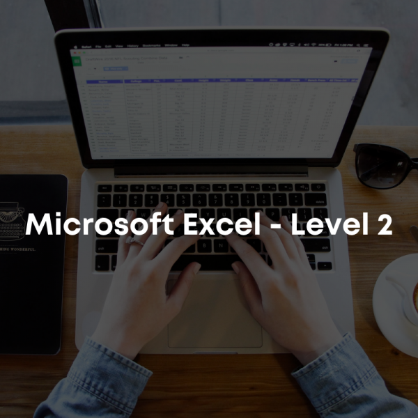 Microsoft Excel - Level 2