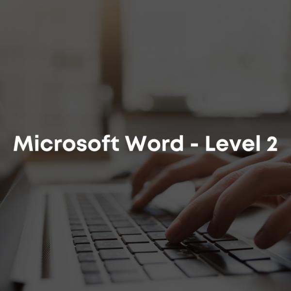 Microsoft Word - Level 2